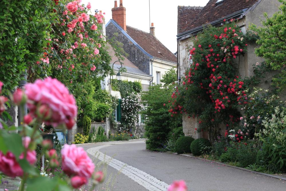 Visite Village Jardin Chedigny : Un livre d exception pour les amateurs de roses ch� digny la vie
