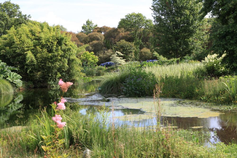 Parc botanique de cornouaille georges l v que jardins - Jardin botanique de cornouaille ...