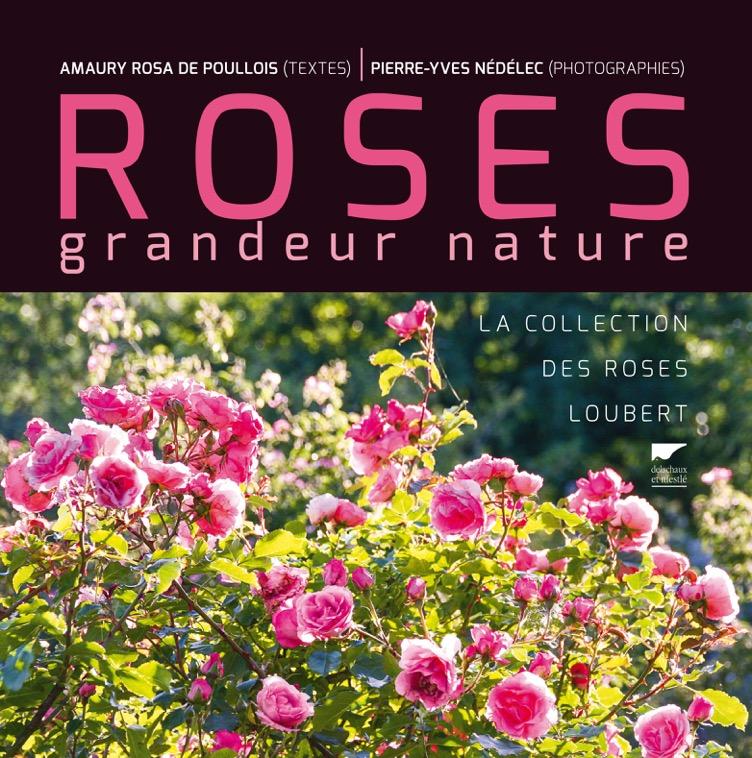 Couv Roses grandeur nature