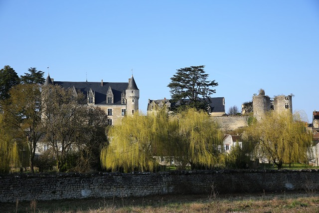P-45- Chateau de Montresor