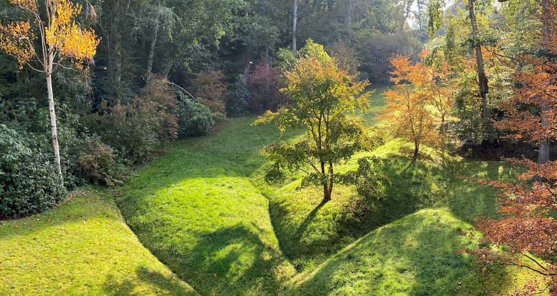 Bois-de-Morville_2Denis-Cribier