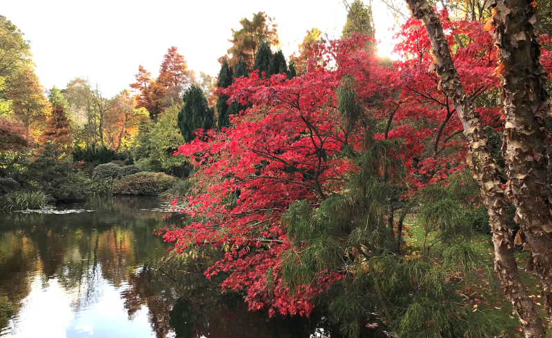 Copie de couleurs d_automne Dantec