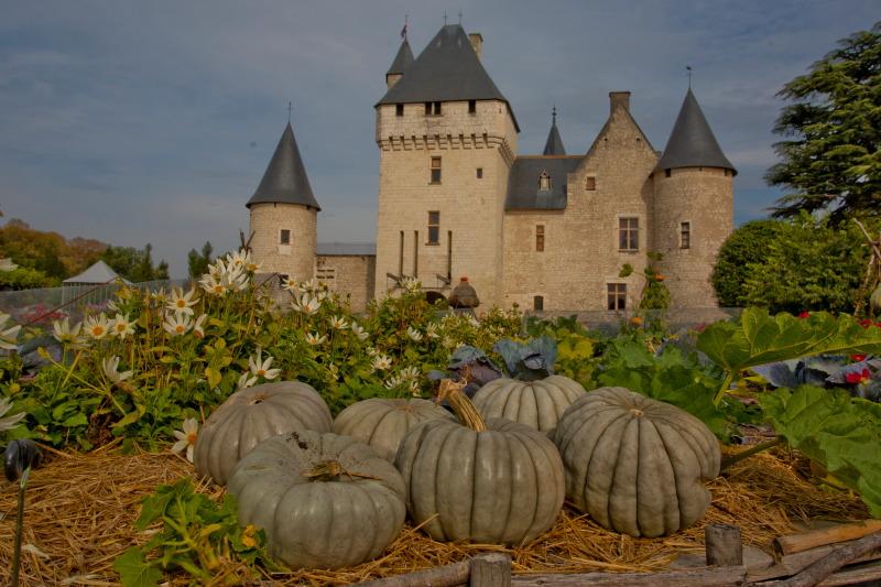 Le Rivau_Kitchen garden_23092012-_MG_9192