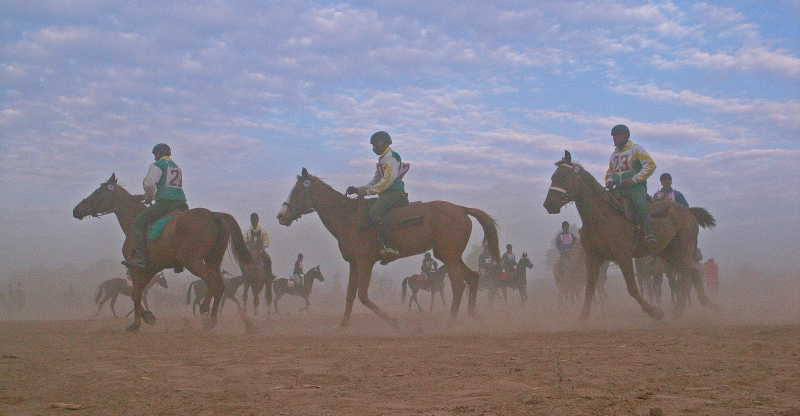 Rajasthan 1